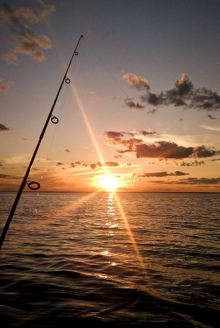 Fishing Pole Sunset